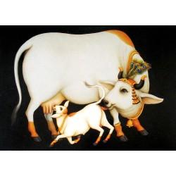 Die heilige Kuh (Super Fotos)