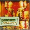 spiritual Slyliner Bhajans Vol. 2