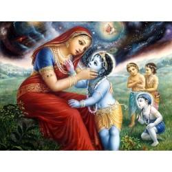 Krishna shows the universe