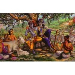 Vrindavan (Kunstbriefkarte groß) Nr. 4
